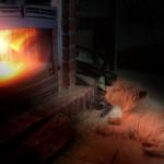Westie Demerino calentándose en la chimenea de casa