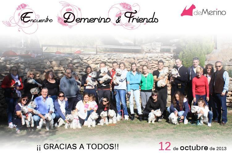 Participantes del Primer Encuentro Demerino & friends