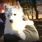 Cachorra Wanted By Demerino en los brazos de su criadora