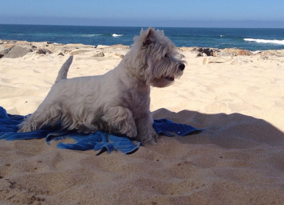 Valladolid - Kopelia Demerino en la playa