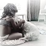 Westie Demerino jugando con nuestra hija de 3 años en el patio