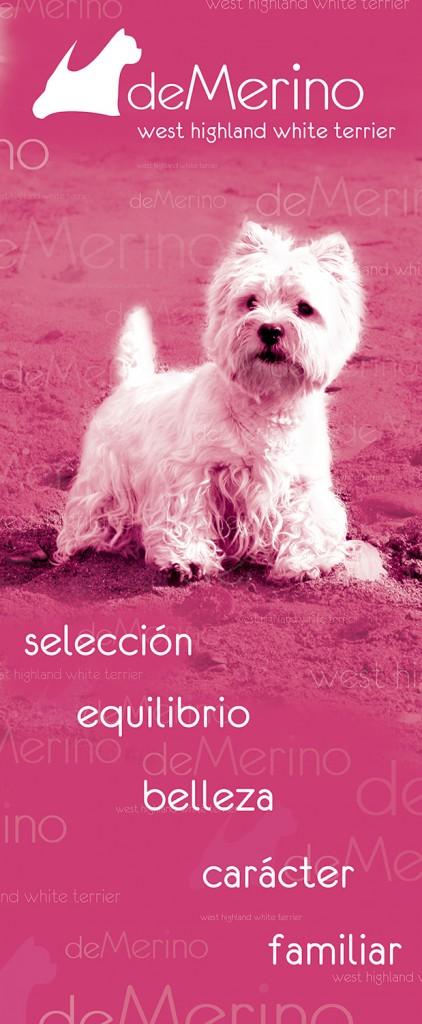 Banner Demerino: selección, equilibrio, belleza, carácter, familiar