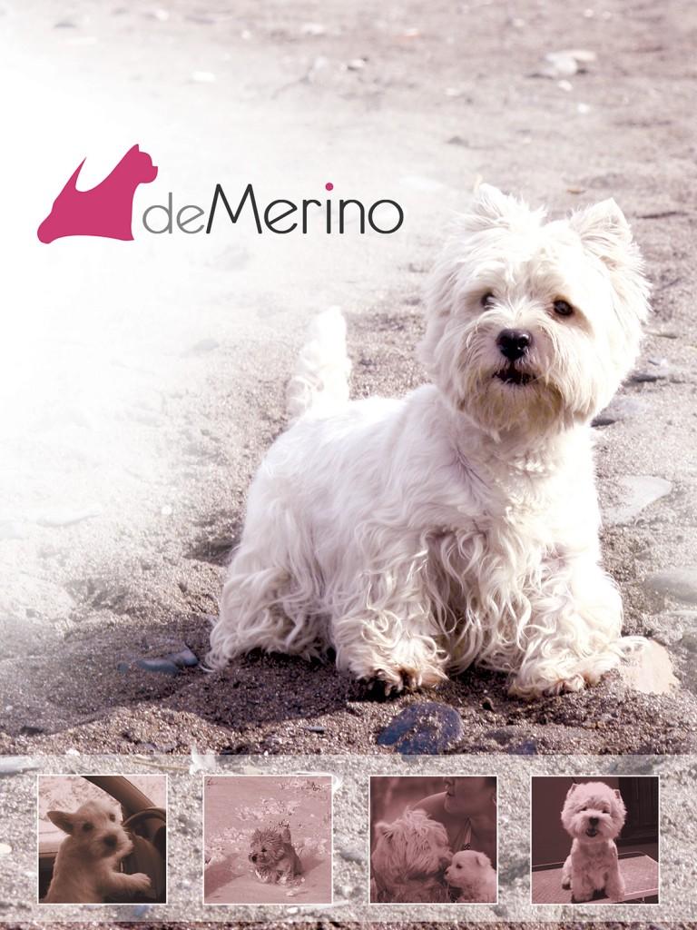 Homenaje Demerino a Yeyé: Yeyé Del Goyepino