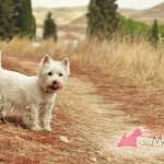 Vhella Demerino en un paseo por el campo