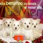 La familia Demerino os desea el mejor año 2015. Imagen con 5 cachorros de la camada de Vhella Demerino