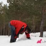 Construyendo un westie de nieve,: amontonando la nieve