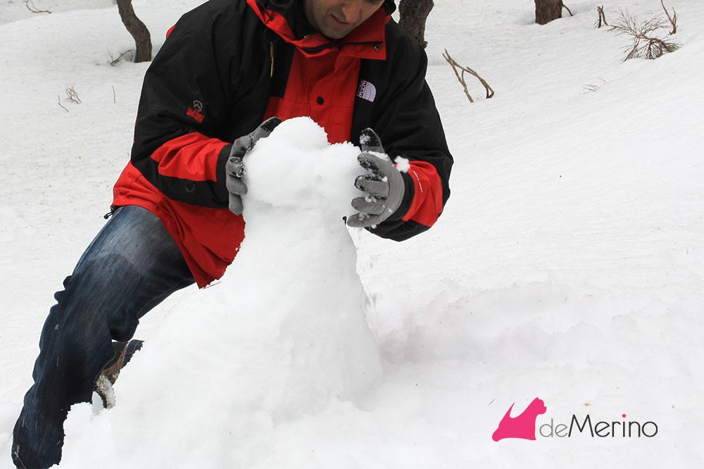 Construyendo un westie de nieve: dando forma al cuello y cabeza