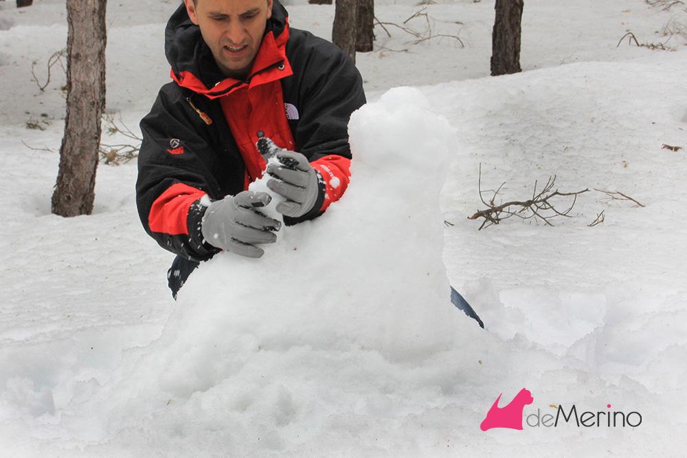 Construyendo un westie de nieve: dando forma a la cola