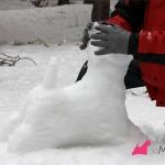 Construyendo un westie de nieve,: dando forma a la cabeza