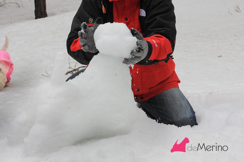 Construyendo un westie de nieve,: rellenando los huecos de la cabeza