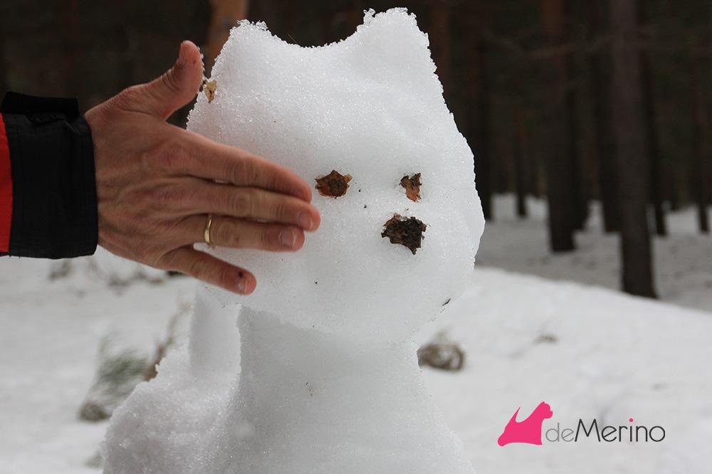 Construyendo un westie de nieve: dando volumen a la cara