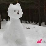 Construyendo un westie de nieve: terminado de frente
