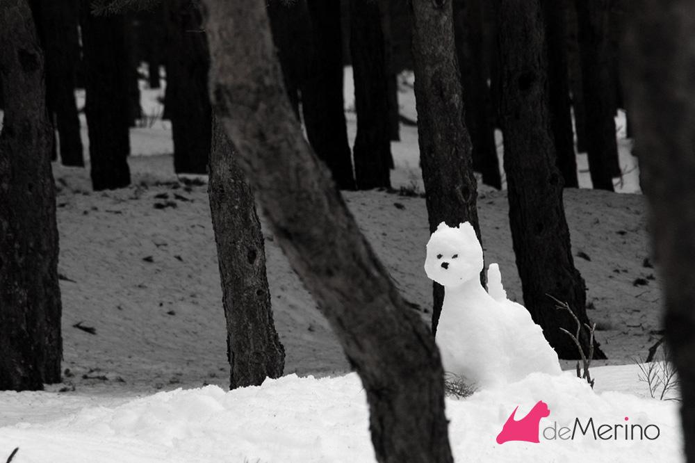 Westie de nieve en el bosque entre pinos
