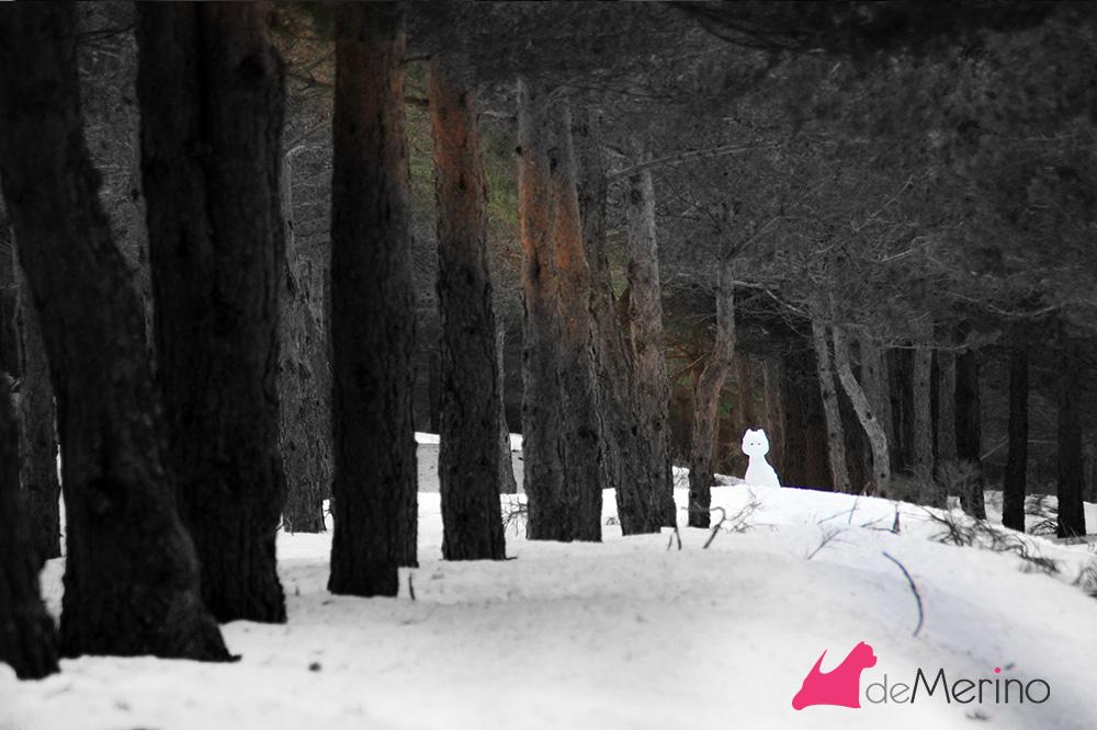 Westie de nieve a lo lejos