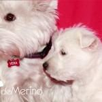 Con Cariño Demerino con su mamá