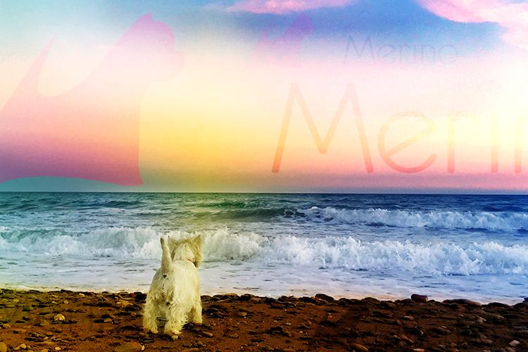 Vhella Demerino en la playa