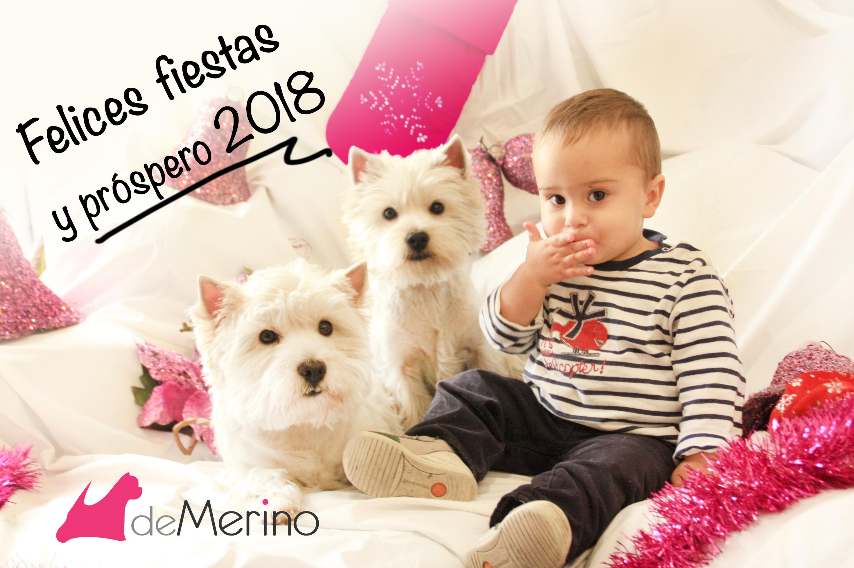 Felices fiestas 2017 con westies Demerino en familia